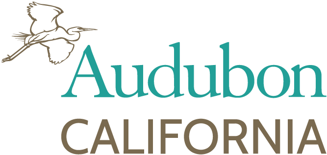 Audubon California Before Logo