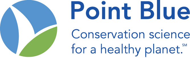 Point Blue Before Logo